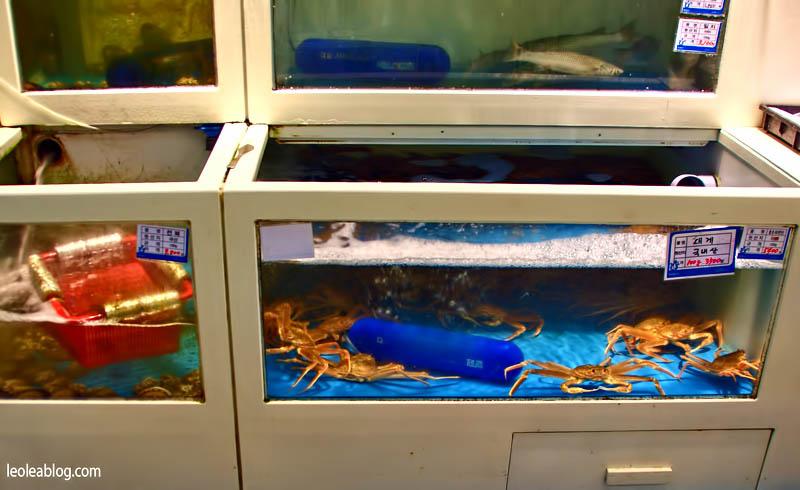daegu korea southkorea asia emart emartdaegu freshfood swiezejedzenie krab