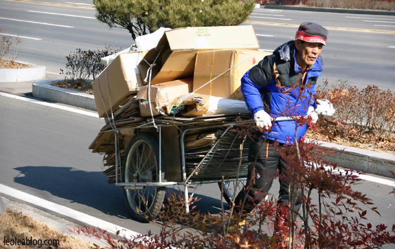 daegu korea southkorea asia ontheroad człowiek human