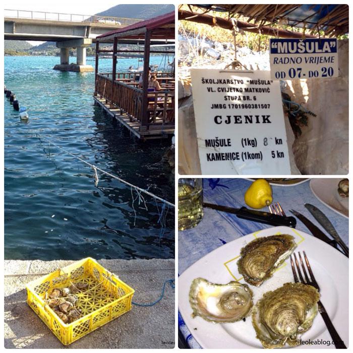 Bosnaandherzegovina Eu Europe Balkany Wakacje Holiday Travellers Journey kamenice musule mule ostrygi
