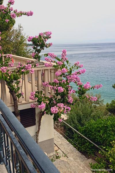 Hrvatska Chorwacja Brela Eu Europe Balkany Wakacje Holiday Travellers Journey