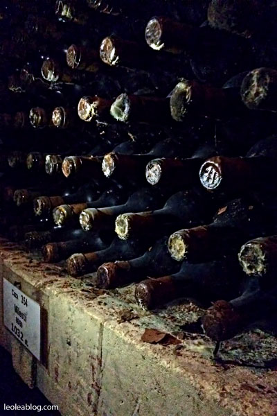 Wino Mołdawia Moldova MilestiMici Winiarnia Podziemia Butelki Eu Europe SemiDry wytrawne półwytrawne słodkie dry semiseco semiduce