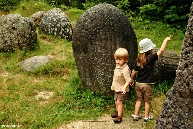 Rumunia Romania Eu Europe Easteurope Journey Travellers wyprawa wyjazd podróżnicy  trovanty kamień stone kamienierosną okolicehorezu wakacje przygoda travel adventure holiday pączkowanie museum