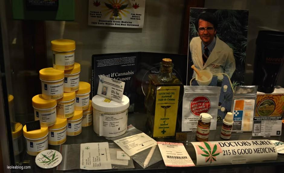 Amsterdam Holland Holandia Marijuana Marihuana Cannabis Hash Muzeum Museum Muzeummarihuany leki leczniczamarihuana