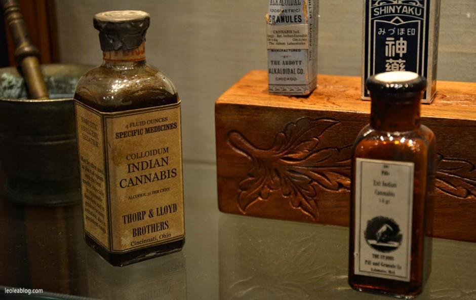 Amsterdam Holland Holandia Marijuana Marihuana Cannabis Hash Muzeum Museum Muzeummarihuany indiancannabis leczniczamarihuana leki