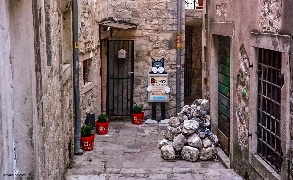 Kotor Montenegro Czarnogóra Balcans Bałkany Eu Europe Zatokakotorska Holiday Journey Travel Traveller Traveler Adventure Travelaroundtheworld muzeumkotów catsmuseum catsofkotor podróże