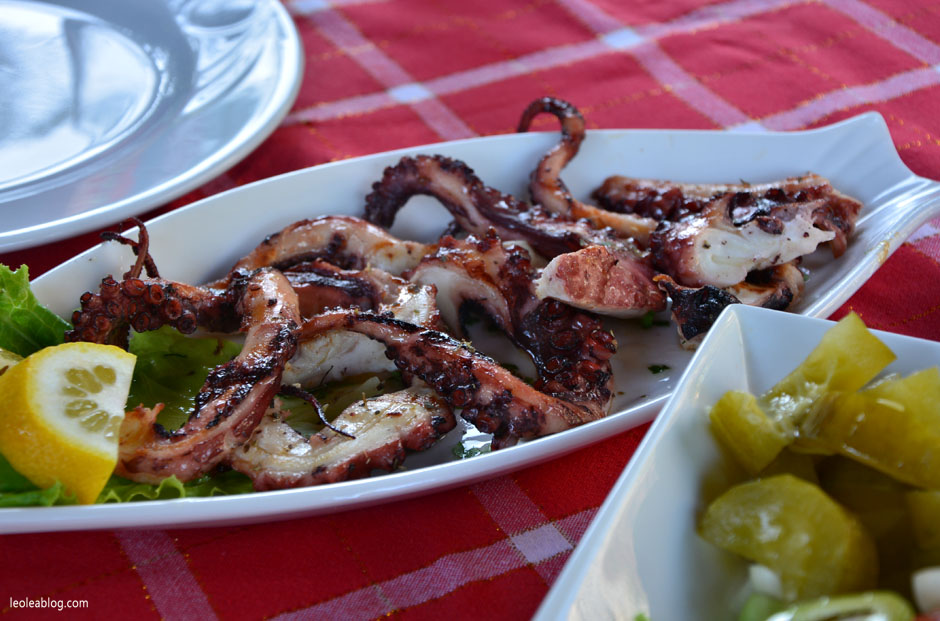 ośmiornica octopus albania food potrawy jedzenie kuchnia seafood owoce morza travel podróż bałkany