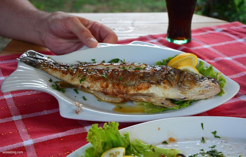 okoń bass albania food potrawy jedzenie kuchnia seafood owoce morza travel podróż bałkany ryba