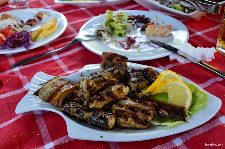 albania food potrawy jedzenie kuchnia seafood owoce morza travel podróż bałkany ryba węgorz eel